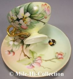 Limoges Hand Painted Roses Bee Cup Saucer Signed E Miler