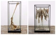 """Résultat de recherche d'images pour """"vitrines anselm kiefer"""""""