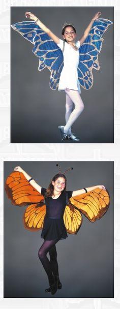 butterfly wings