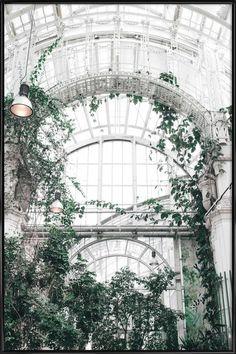 Palmenhaus als Poster im Kunststoffrahmen   JUNIQE