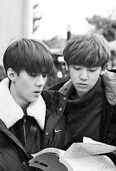 """Sehun and Chanyeol on """"EXO Next Door"""""""