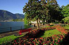 Let's take a walk!    Along the lake (Minusio - Locarno)