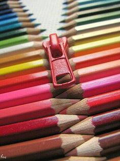 Open the colors in your life