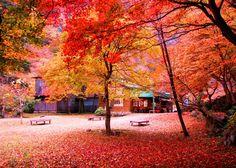 Sandankyo Gorge, Hiroshima, Japan 三段峡 広島県 山県郡 安芸太田町