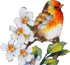 dreamies.de (k3x20865gz1.gif) Gif Animated Images, Animation, Bird, Animals, Animales, Animaux, Birds, Animal, Animation Movies