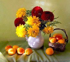 MIS FLORES: Mis Flores Photo