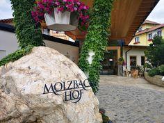 Wanderurlaub in Niederösterreich: Molzbachhof - The Chill Report Austria, Sidewalk, Hotels, Hiking, Side Walkway, Walkway, Walkways, Pavement
