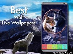 Wolf Tribe Live Wallpaper  Android App - playslack.com ,  Become part of the tribe and allow your dreams to run wild in the pack with the mystic power of the wolf and magic dream catcher!+ Tribal Native American Cherokee symbolism of the wolf to empower your spirit! + Just install the app and choose or set your Native Indian Cherokee Wolf Tribe live wallpaper! You can change the speed the dreamcatcher sways in the wind, and your sky moves behind your wolf.+ Hundreds of wolf scenes, tribe…