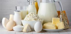 Milk and yogurt may increase vitamin B12 intake
