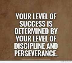 Your level of success is determined by your level of discipline and perseverance.