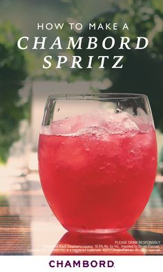 Now this is a cocktail worth sipping on all summer long. Grab your girlfriends and combine Chambord raspberry liqueur dry white wine and soda water to make this Chambord Spritz recipe! Brunch pool-side party you name it this drink is sure to be a hit. Holiday Drinks, Party Drinks, Fun Drinks, Yummy Drinks, Alcoholic Drinks, Wine Parties, Vanilla Vodka Drinks, Vodka Lemonade, Christmas Cocktails