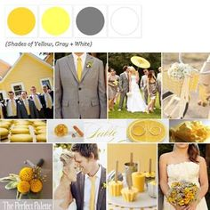 Shades of Yellow, Gray + White