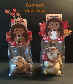 Anja Pauw's Hobbysite