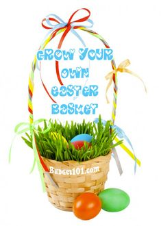"""Grow your Own Easter Basket! An all natural filler for """"Green"""" easter celebrations! (Click on photo for directions)"""