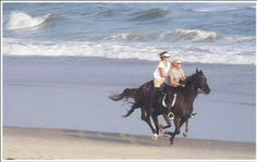 Riding horses on the beach at the outer banks