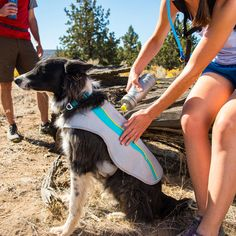 Ruffwear Swamp Cooler Dog Vest