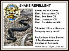Snake Repellent snake repellant, idea, yard, diy snake repellent, outdoor, essenti oil, garden, snakes, natural snake repellent