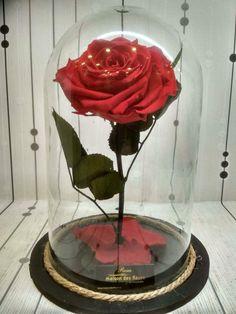 Αποχυμωμένα τριαντάφυλλα μακράς διάρκειας Forever Rose, Glass Vase, Home Decor, Decoration Home, Room Decor, Home Interior Design, Home Decoration, Interior Design