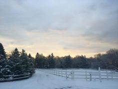 Beautiful Sunday morning at the farm 1/25/15