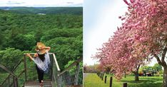 18 Secret Places In Ontario To Bring Your Girlfriend This Spring featured image