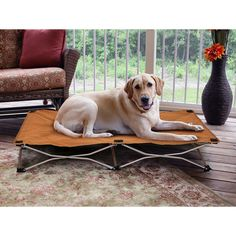 Carlson Portable Pup Large Pet Bed - Overstock™ Shopping - The Best Prices on Carlson Pet Products Pet Cots