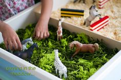 small world horse play - meadows from wool and show jumping on a bed of wood chips Preschool Lesson Plans, Preschool Letters, Preschool Themes, Preschool Art, Toddler Learning Activities, Montessori Toddler, Infant Activities, Literacy Activities, Family Day Care