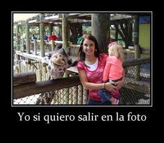 Fotos de Animales: Yo si quiero salir. Fotos para facebook, Fotos de Animales,imagenes para compartir, imágenes para facebook.