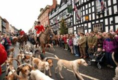 "Over quarter of a million people have turned out at Boxing Day Hunt Meets around Britain. Boxing Day is the biggest day in the hunting calendar and attendance at the local meet forms a traditional part of Christmas for many families in the countryside.     Barney White-Spunner, Executive Chairman of the Countryside Alliance, commented:    ""Today has been an extraordinary display of support for hunting right the way across the country...."""