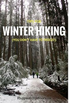 Tips for Winter Hiking. You don't have to freeze on your winter getaway!