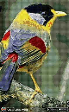 Cross Stitch Embroidery, Parrot, Bird, Painting, Cross Stitch Art, Dots, Animals, Embroidery, Parrot Bird