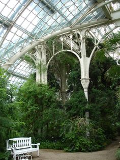 Trees + Victorian greenhouses = :) 