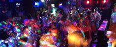 Die besten Karaoke-Bars in Kapstadt Bar, Nightlife, Karaoke, Concert, Cape Town, Environment, Concerts