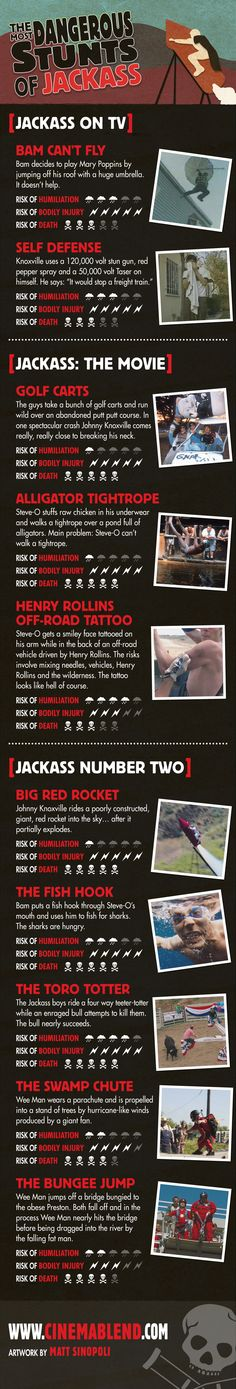 The most dangerous jackass stunts, in infographic form!