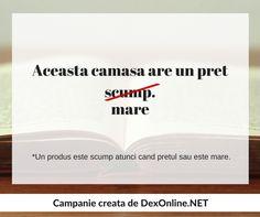 Dexonline promoveaza limba romana vorbita corect Grammar, School, Romans, Schools