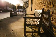 bench under the sun