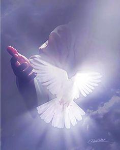Images Du Christ, Pictures Of Jesus Christ, Jesus Artwork, Jesus Christ Painting, Holy Spirit Images, Image Jesus, Heaven Art, Dove Pictures, Jesus Wallpaper