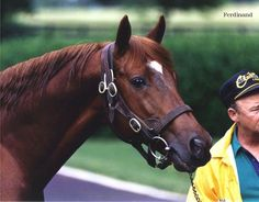 A blog dedicated to the great Thoroughbred racehorse. No prejudices here, I respect all racehorses...