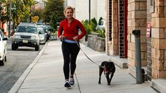 Volunteers across the nation are taking shelter dogs on daily jogs to give them a little exercise and a better chance at adoption.