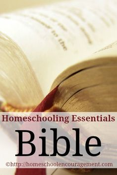 Homeschooling Essentials: Bible - This is the one area of education I just do not want to mess up.  I want to etch His word onto the hearts and minds of my children!