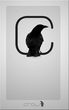 crow logos - Google Search