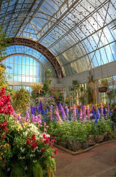 Newest No Cost Winter Garden new zealand Popular Just about the most commonly asked questions about winter gardening is whether or not extreme temper Nature Aesthetic, Flower Aesthetic, Auckland, Dream Garden, Home And Garden, Pretty Flowers, Colorful Flowers, Pretty Pictures, Aesthetic Pictures