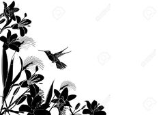 Tropical Flower Background With Hummingbird Royalty Free Cliparts ...