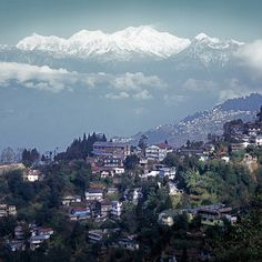 Darjeeling, check out the New Elgin hotel, staying there is a step back in time. Mussoorie, Darjeeling, Shimla, West Bengal, India Travel, Adventure Travel, Tourism, Places To Visit, Asia