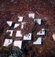 robert smithson mirror - Google Search