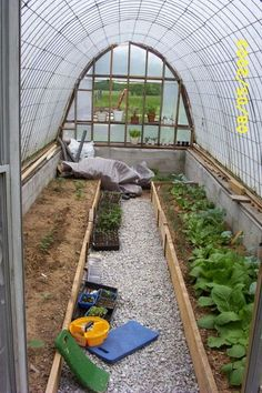 Greenhouse Made From Cattle Panels At Http://inmykitchengarden.blogspot.com/