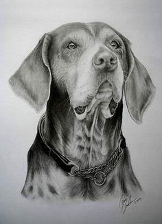 Dog Drawing http://dogsiteworld.com/
