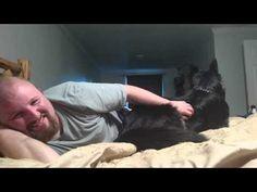 Dog Moons camera Funny