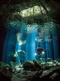 Ripples & Rays by Jennifer Penner on ~ Scuba diving and underwater photography go hand-in-hand in the cenotes of the Yucatan Peninsula of Mexico. Best Scuba Diving, Scuba Diving Gear, Cave Diving, Underwater Caves, Underwater Photos, Underwater Photography, Underwater Life, Film Photography, White Photography