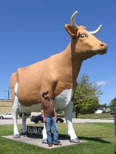 cedar_crest-cow - Google Search. The COW at Cedar Crest Ice Cream in Manitowoc, WI