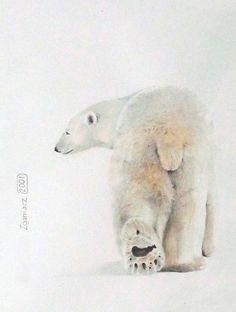 "Saatchi Art Artist Werner Zganiacz; Drawing, ""Polar Bear"" #art"
